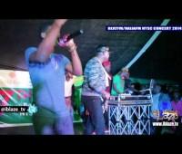 Dr Sid's Performance At The Beat FM Naija FM NYSC Concert 2014